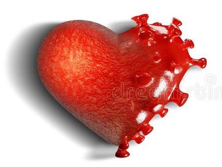 El Virus y El Amor