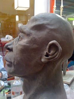Néanderthal profil gauche