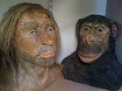 Néanderthal et singe