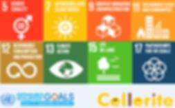 UN SDG.png