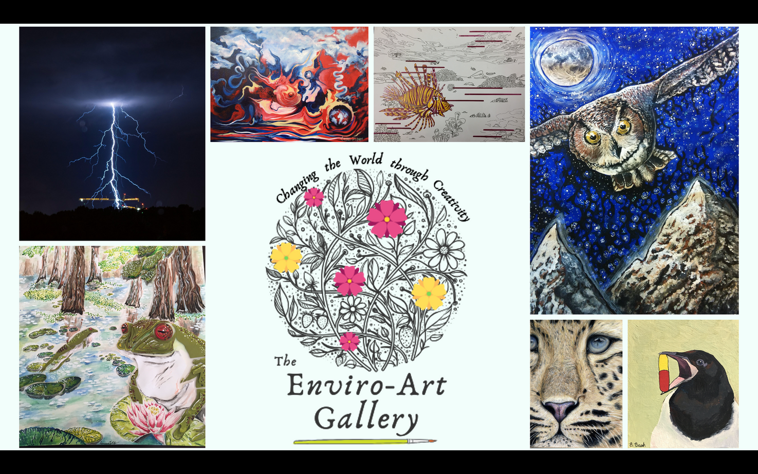 The Enviro-Art Gallery hopes to connect people to nature through an emotive, interpretative multimedia method of communication. It was created to depict through the eyes of an advocate or an artist, how the environment connects to us all and how other experience environmental issues in other parts of the world.