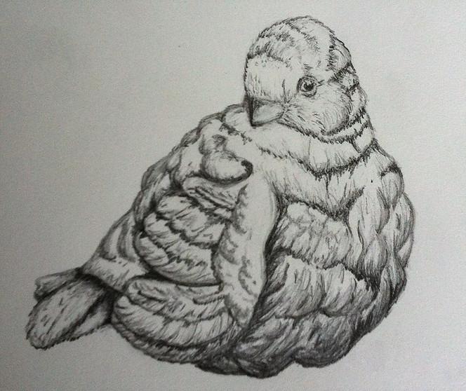 Cameron Oglesby Little Bird Statue.jpg