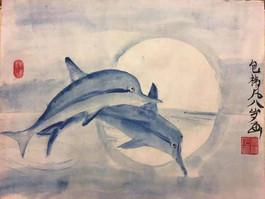 海豚之梦Dolphin's Dream