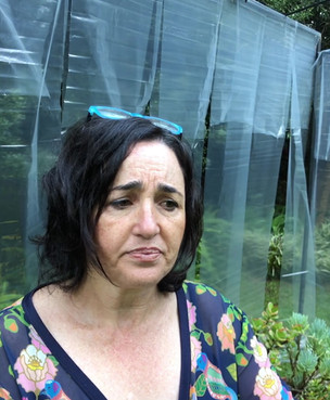 Tessa Teixeira Artist Testimony