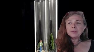 Elisa Pritzker Artists Testimony