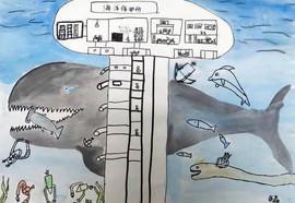 《海洋保护所》Marine Conservation Institution