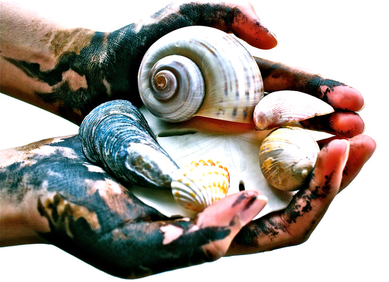 11. Polluted Hands Hold the Sea_Sujal Ma