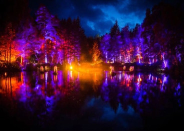 The Enchanted Forest 2014