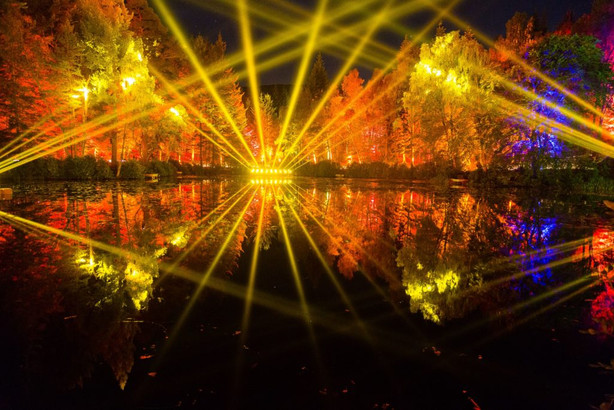 Enchanted Forest 2015