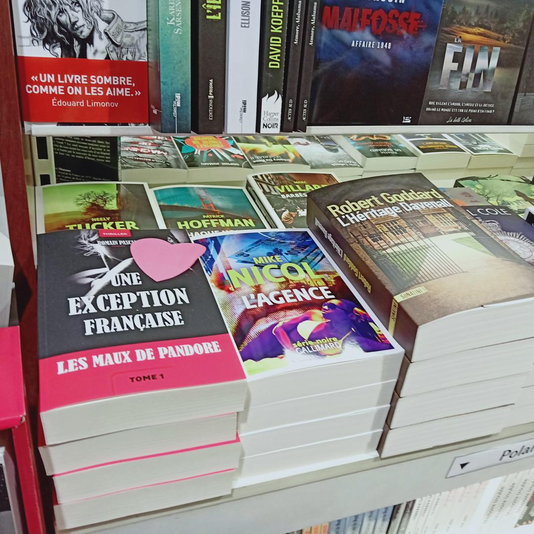 Coup de coeur d'un libraire.
