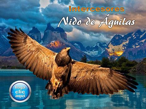 Nido_de_Águilas_xsx.jpg