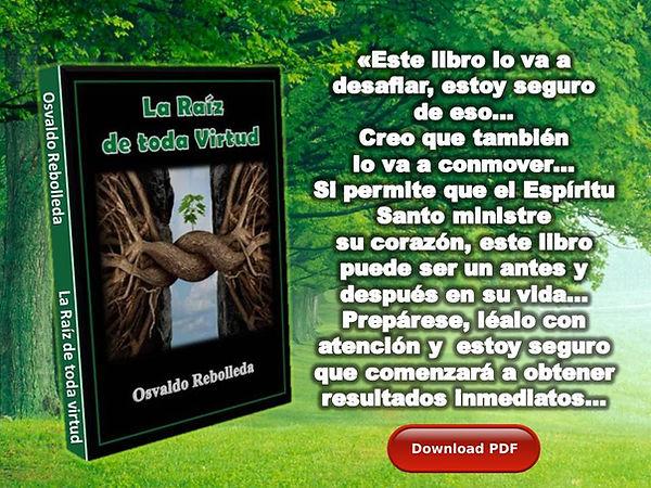 La_Raíz_JPG_WEB_1.jpg