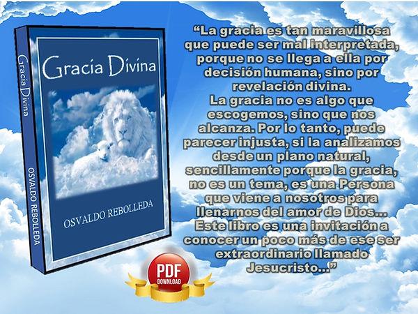 Gracia Divina NUEVA JPG PARA WEB.jpg