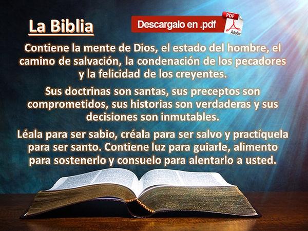 BIBLIA PARA PAGINA.jpg