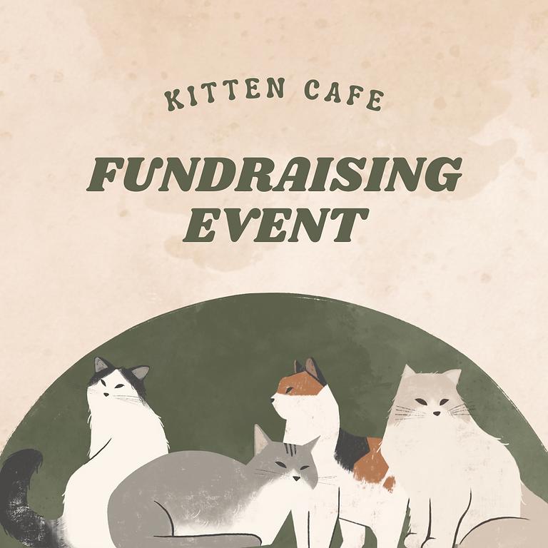 Kitten Cafe