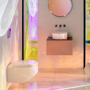 Wall Hung Toilet