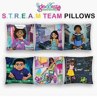 stream team pillow mockups.png