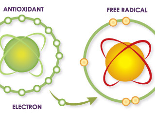 What Are Free Radicals and Antioxidants?