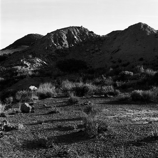 Uranium Mine Waste Mountain