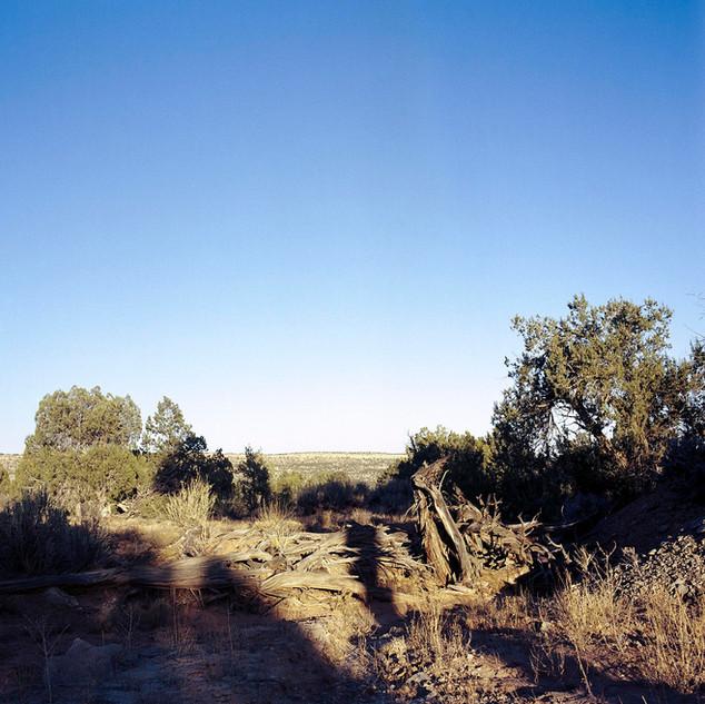Field of Open Uranium Mine Shafts