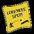 Spot de cornhole