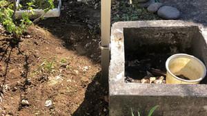 不凍栓柱 交換工事