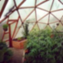 serre dome jardinage