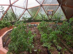 semis serre dome