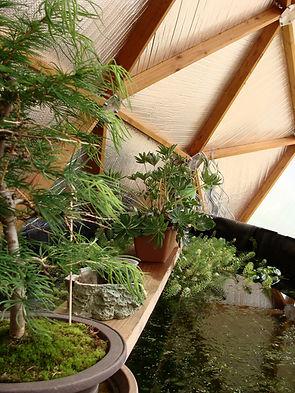 serre dome réservoir