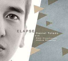 Daniel Toledo - Elapse