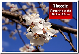 Theosis Partaking of the Divine Nature.p
