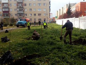 Акция «Сад Памяти» продолжена!