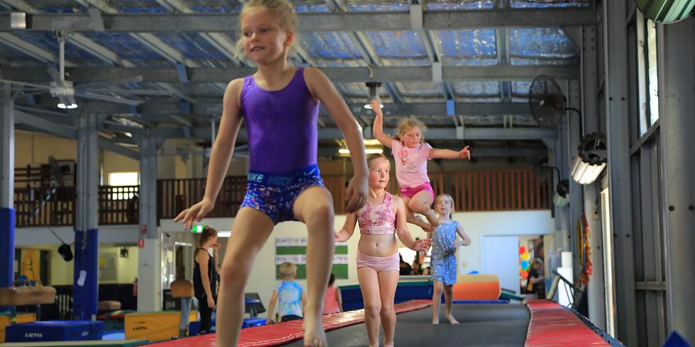 Wide Bay Gymnastics Ribbon Carnival