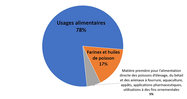 Usages_Pêche.png