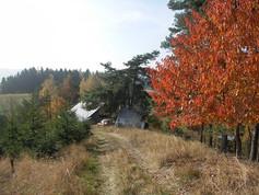 Podzimní přísušek z jedné