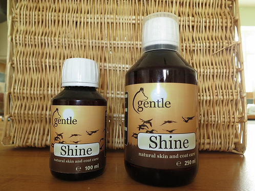 Gentle Shine 250ml