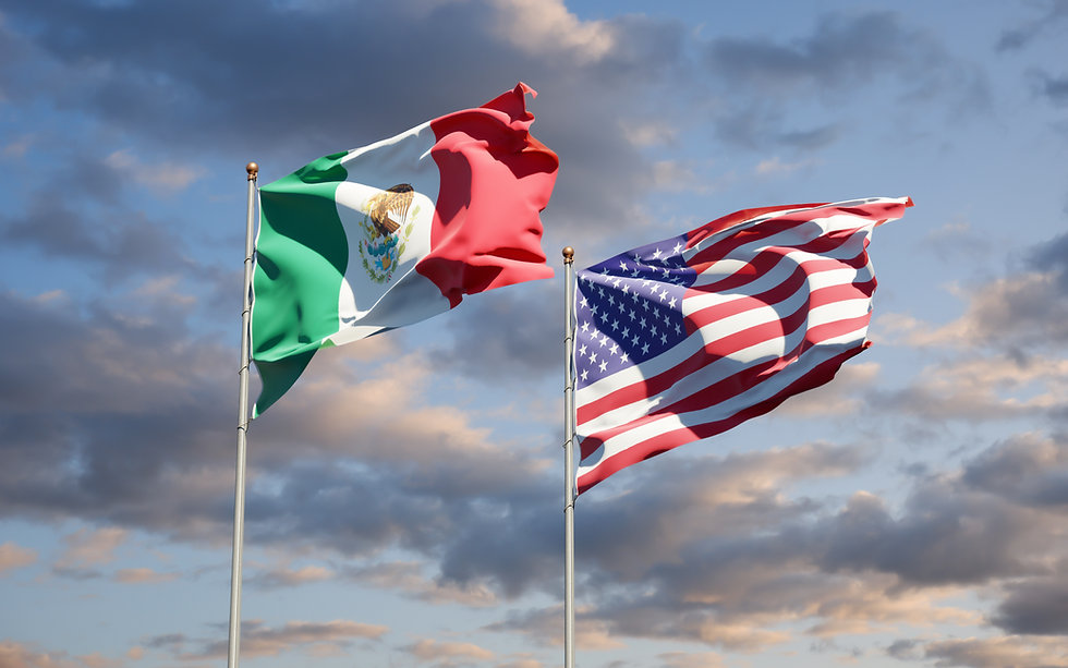 beautiful-national-state-flags-mexico-us