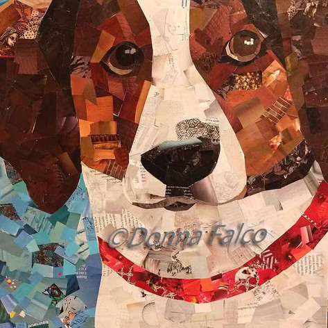 Lucky - Treeing Walker Coonhound/Beagle Mix