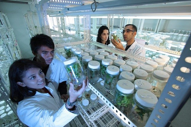 Scientists Using Biotechnology