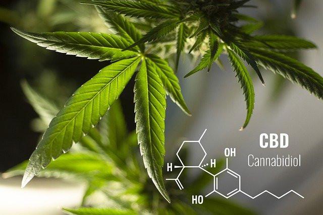 Chemical Composition of Cannabidiol