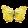 Papillon Aquarelle 17