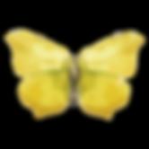 Acuarela de la mariposa 17