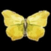 Wasserfarbe Schmetterling 17