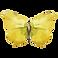 Watercolor Butterfly 17