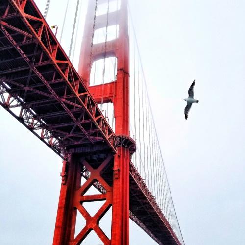 San Francisco UX Writers