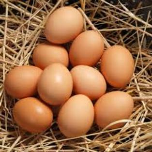 Farm Fresh Eggs (1 dozen)