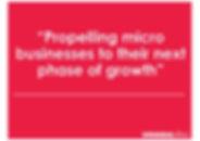 propelling micro businesses.jpg