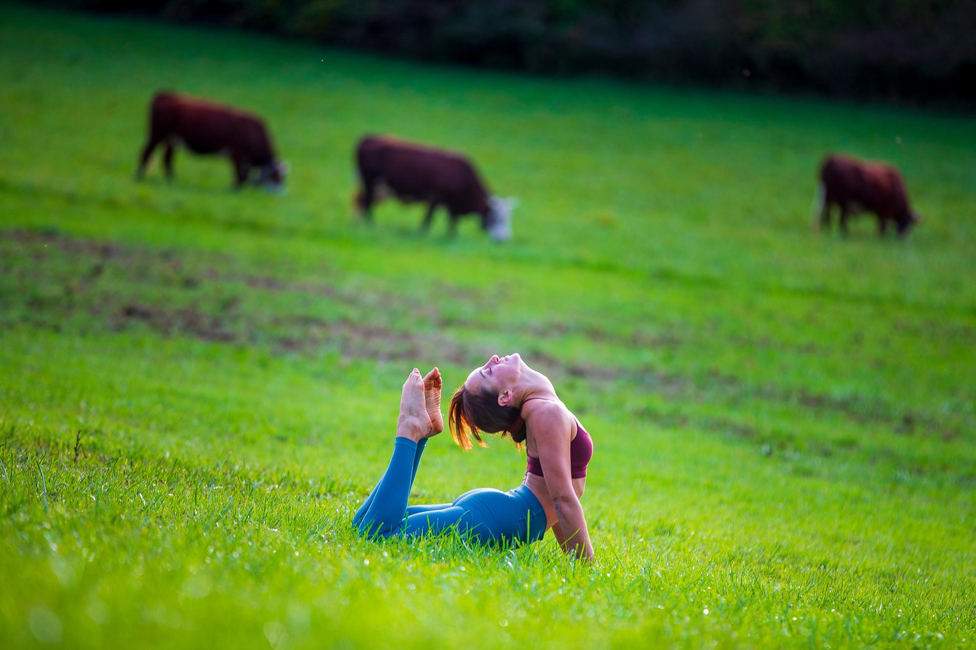 Hatha Yoga (dynamique)