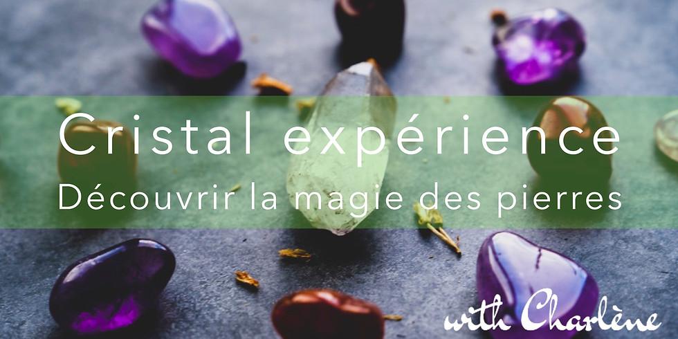 Cristal expérience