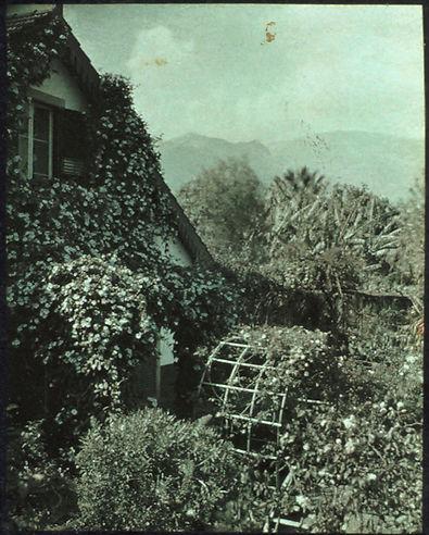 Madeira,_by_Sarah_Angelina_Acland,_c.191